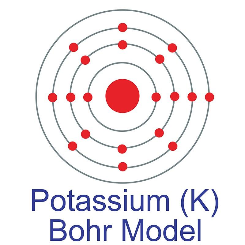 Potassium (K) | AMERICAN ELEMENTSPotassium Bohr Model Project