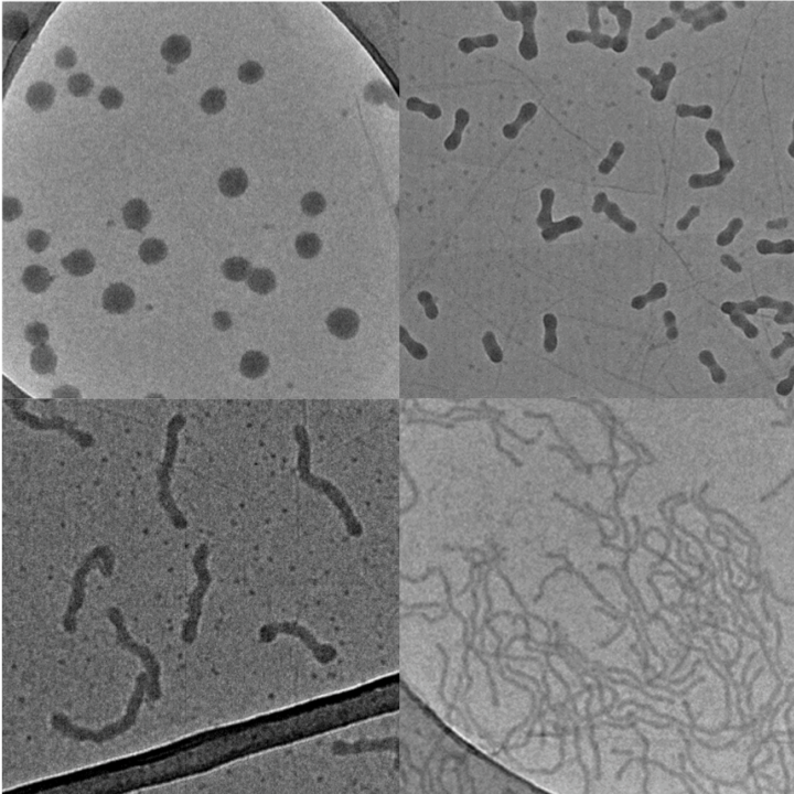 A new technique in chemistry could pave the way for producing uniform nanoparticles for use in drug delivery systems.