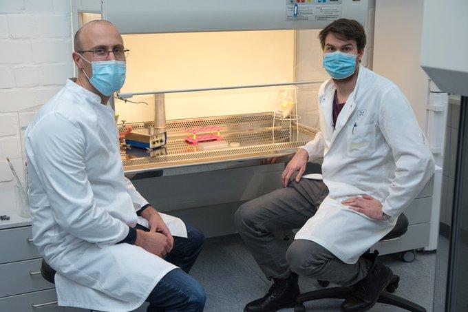 Detecting bacteria with fluorescent nanosensors
