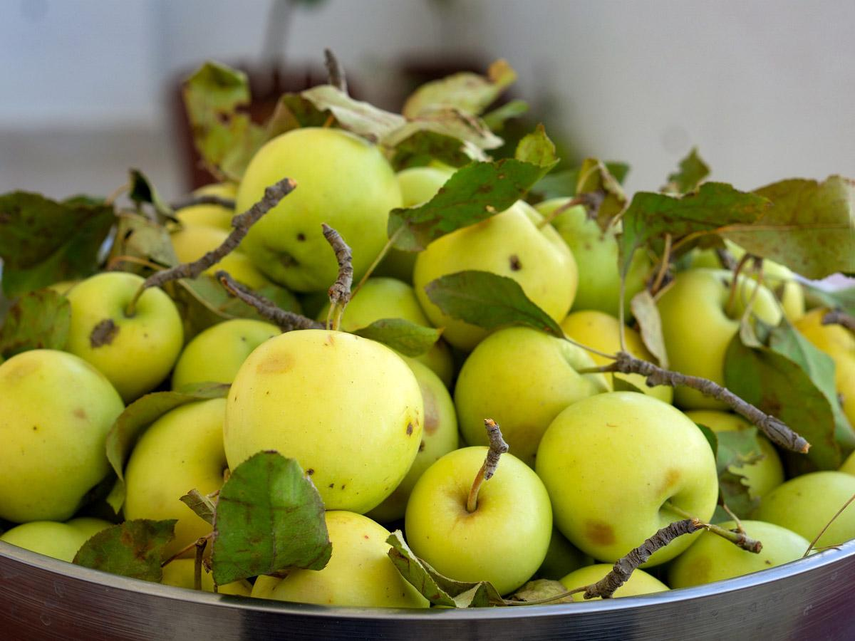 A 'greener' process for extracting compounds from agricultural and food waste