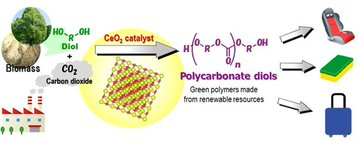 World's first 'green' synthesis of plastics from CO2