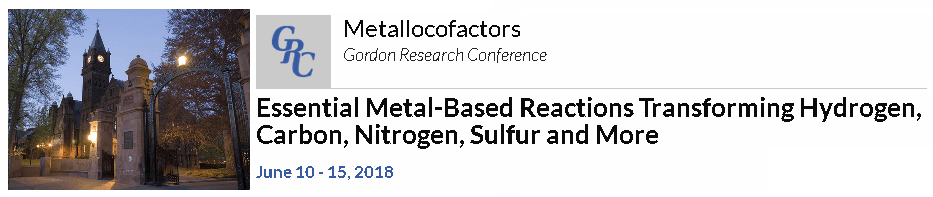 American-Elements-Sponsors-Essential-Metal-Based-Reactions-Transforming-Hydrogen-Carbon-Nitrogen-Sulfur-and-More-Metallocofactors-2018