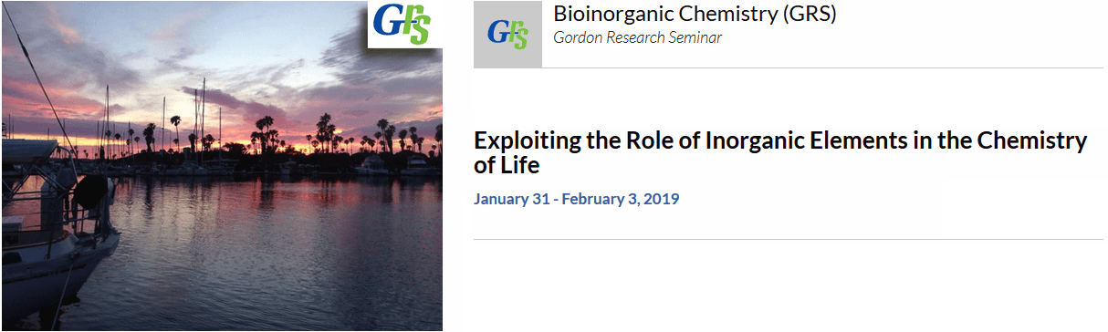 American-Elements-Sponsors-Exploiting-the-Role-of-Inorganic-Elements-in-the-Chemistry-of-Life-Bioinorganic-Chemistry-2019-Logo