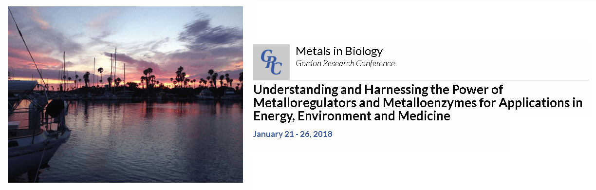 American-Elements-Sponsors-Metals-in-Biology-2018-Gordon-Research-Conference-Understanding-and-Harnessing-the-Power-of-Metalloregulators-and-Metalloenz