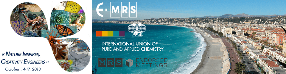 American-Elements-Sponsors-N.I.C.E.-Conference-2018-The-4th-International-Conference-on-Bioinspired-and-Biobased--Chemistry-Materials-Logo