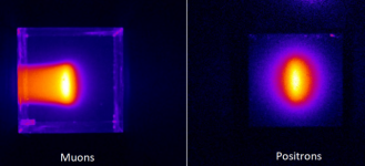 First images of muon beams